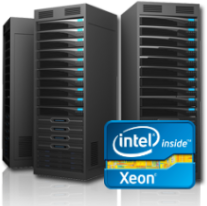 About our Dedicated Server